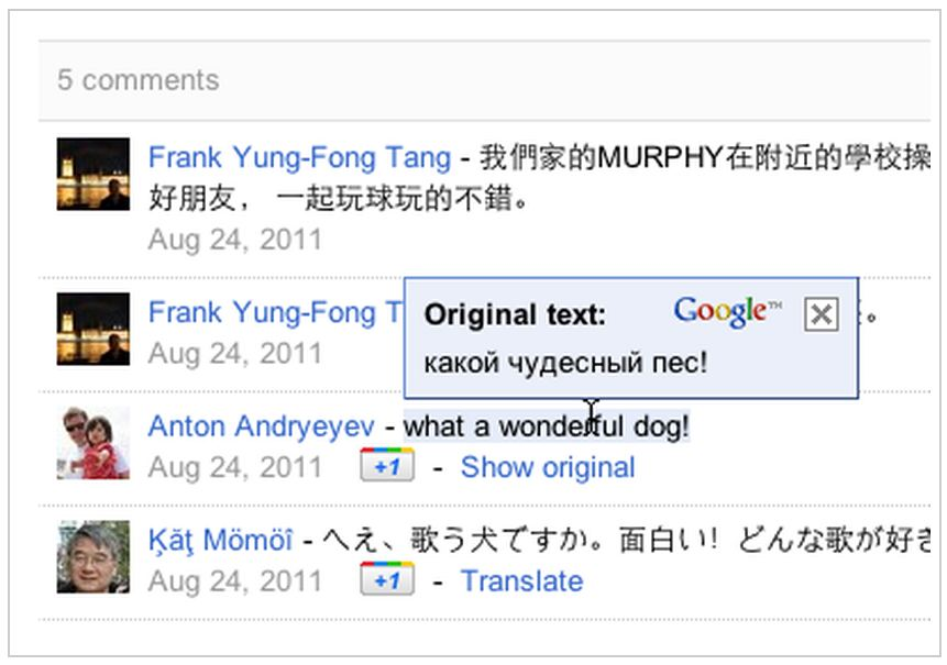Google+ Google Translate